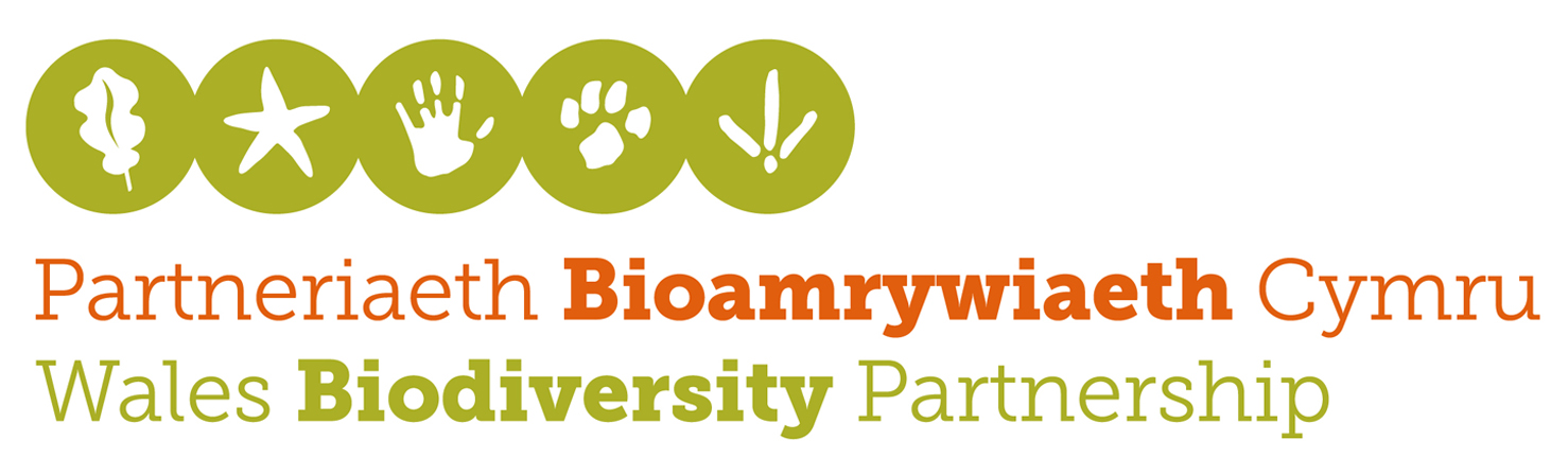 Wales Biodiversity Partnership launch new logotype